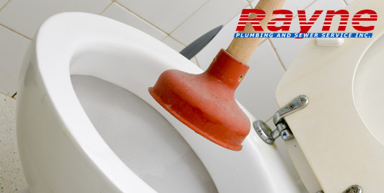 Clogged Toilet Repair Services in San Jose, CA